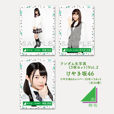 けやき坂46(ひらがなけやき)ランダム生写真(3枚1セット) Vol.2