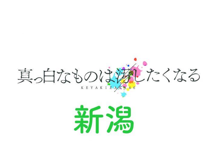 欅坂46 ライブ 2017 新潟 セトリ レポ